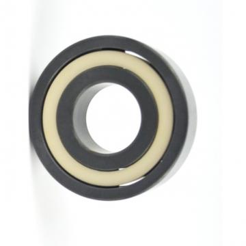 NSK Stainless steel Deep Groove Ball Bearing SS6006 SS6006-2RS